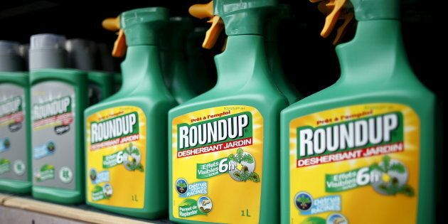 Monsanto's Roundup weedkiller atomizers for sale at a garden shop at Bonneuil-Sur-Marne near Paris, France,...