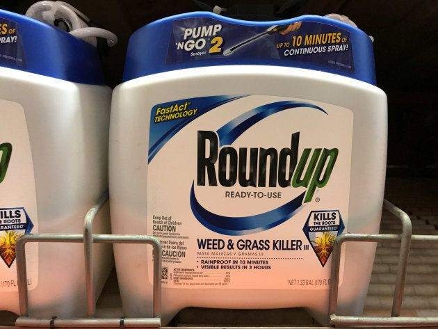 Monsanto Roundup weedkiller for sale in Encinitas, Calif., June 26,