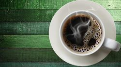 Coffee May Be the Future of Mosquito