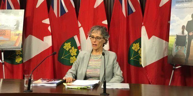 Ontario's environmental commissioner Dianne Saxe speaks to reporters at a press conference at Queen's...