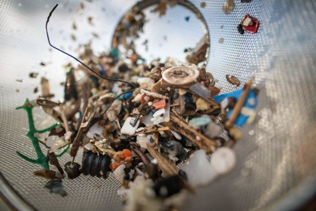 Microplastic particles have been found in human waste for the first time.
