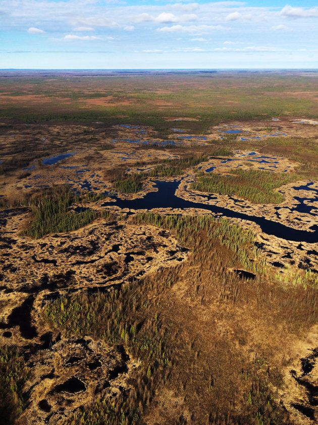 The Edéhzhíe Dehcho Protected Area/National Wildlife Area conserves a sweep of boreal forest west of...
