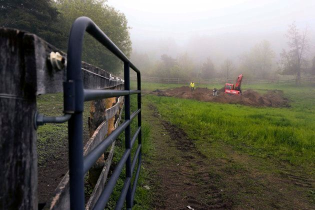 Volunteers recover the remains of horses on a farm in Stouffville, Ont. On May 18, 2018, the OSPCA charged three people with permitting an animal to be in distress, failing to provide adequate food and failing to provide care necessary for general welfare.