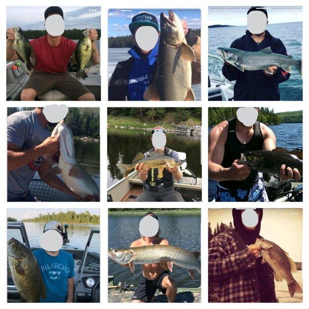 Plenty of fish mens profiles for dating