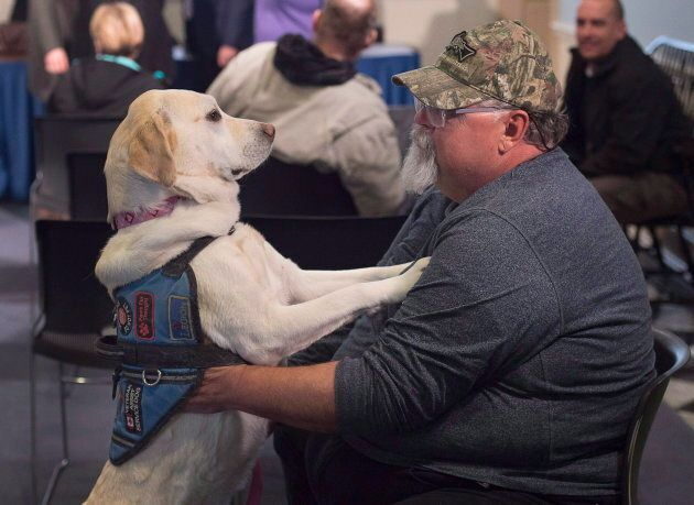 Medric Cousineau, a retired air force navigator, with his service dog, Thai, in Halifax on Mar. 24, 2017....