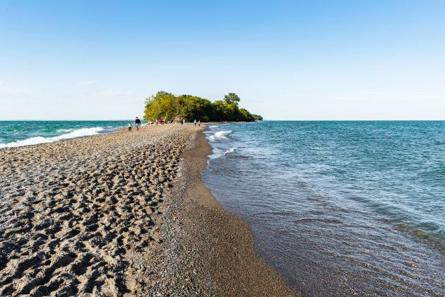 A lush Carolinian forest oasis at the southern tip of Canada, at Point Pelee National Parkin Ontario.