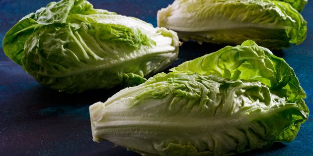 Health officials in Canada and the U.S. are telling people to avoid eating romaine lettuce because of...