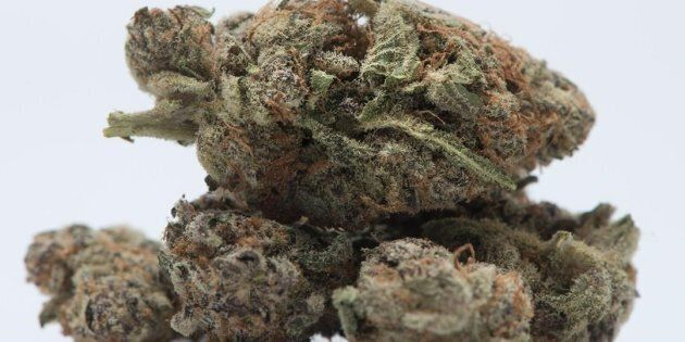 Alberta says it is temporarily suspending retail cannabis licences due to a shortage of supply. The Alberta...