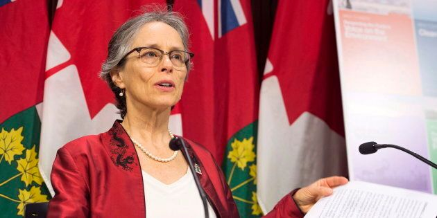 Environmental Commissioner of Ontario Dianne Saxe releases her annual report at a news conference at...