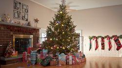 A Nova Scotia Professor Is Engineering The Perfect Christmas