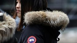Canada Goose Shares Tank Amid Talk Of Chinese