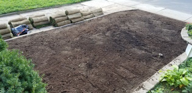 I sifted the top 12 inches of my front yard by hand to get rid of every root and bulb, because why rent a tiller?