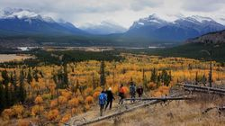 'Bullying' Forces Alberta To Cancel Public Meetings On Parks: