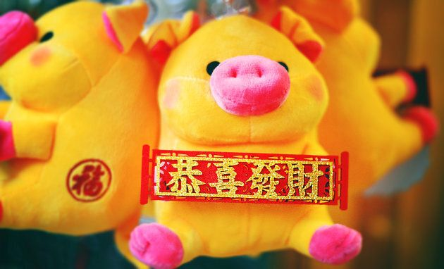 The Year of the Earth Pig is a lucky one.