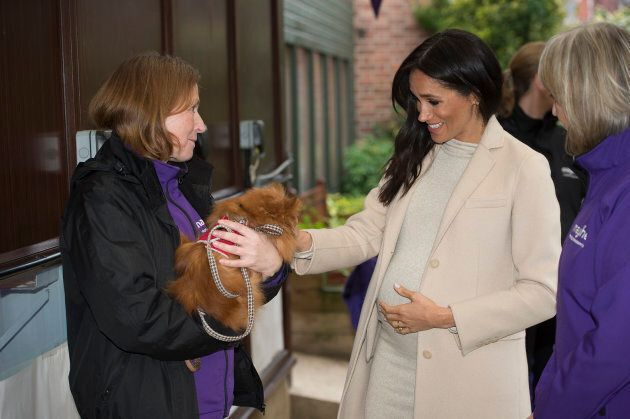 Cradling her baby bump, Meghan Markle meets Foxy during her visit to the Mayhew, an animal welfare charity on Jan. 16, 2019.