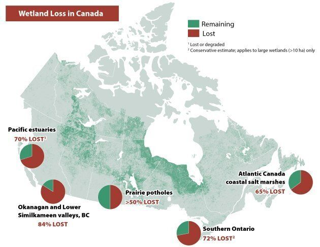 Wetland Loss in Canada (Map by the Nature Conservancy of