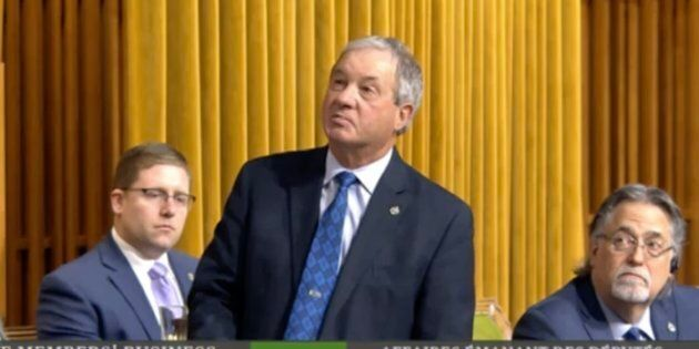 Conservative MP Ron Liepert addresses the House of Commons on Feb. 4,
