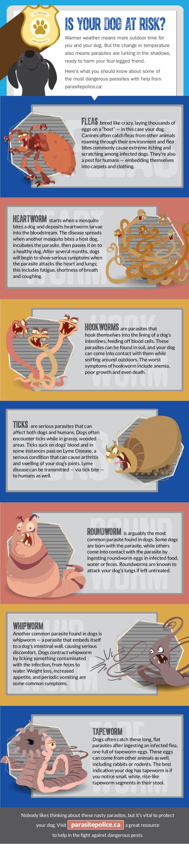 Information provided by parasitepolice.ca.
