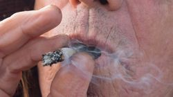 San Francisco Erased 8,123 Pot Convictions. Canada Is Another