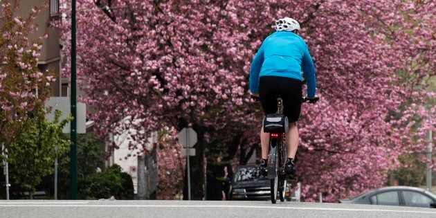 A lone Vancouver cyclist rides north on Heather Street in April