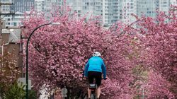 B.C. Welcomes 1st Day Of Spring With Record-Breaking