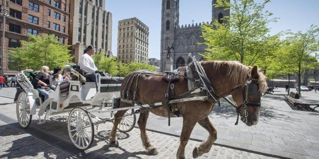 A horse-drawn carriage rides past the Notre Dame cathedral in Old Montreal on May 18,