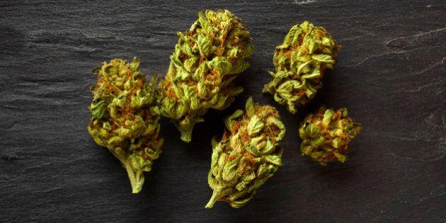 Medical marijuana flowers from a California dispensary on a slate