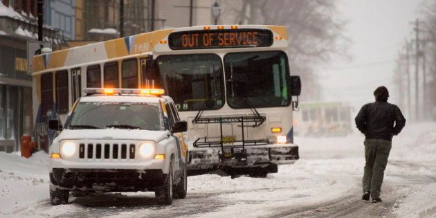 Halifax Bus Bed Bug Discovery Prompts Commuter To Strip In