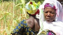 A Small Village in Mali Is Farming Toward a Viable Food