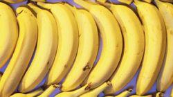 Are Our Precious Bananas Going