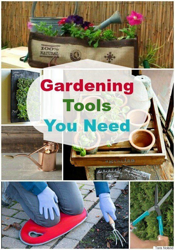20 Gardening Tools And Accessories You'll Need This Spring