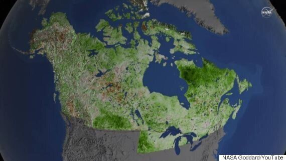 Canada's North Is Going Green Because Of Climate Change: NASA