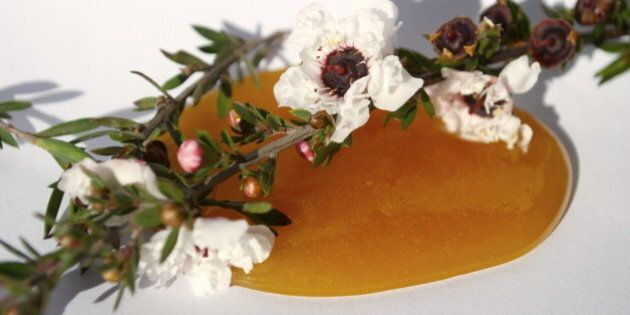 What Are The Benefits Of Manuka