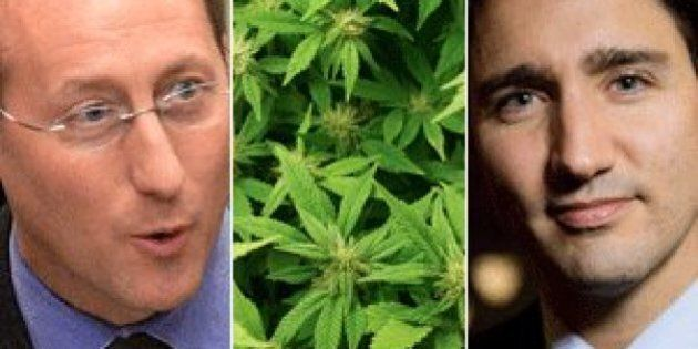 Peter MacKay's Marijuana Legalization Stance Remains Unchanged After Addiction Centre