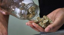 Vancouver Pot Shops Should Be Closed, Not Regulated: