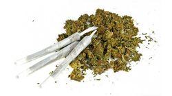 Marijuana Use Declining Among Youth: