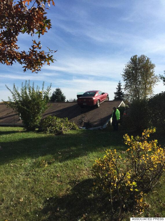 Mustang Lands On Roof Of Michigan