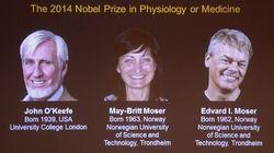 Brain GPS Takes Nobel Prize In Medicine For