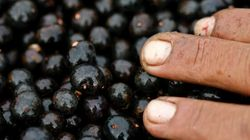 Eat, Don't Cleanse With Acai Berries For Health