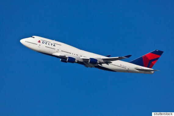 Delta Airlines Allows Turkey On Flight For 'Emotional