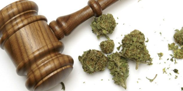 Marijuana and a gavel together for many legal concepts on the