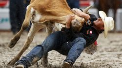 Admitted Poacher Has No Place In Canada's Top Rodeo