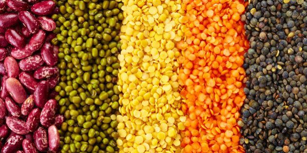 ranks of various legumes