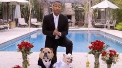 John Legend Plays Wedding Singer (And Planner) For His