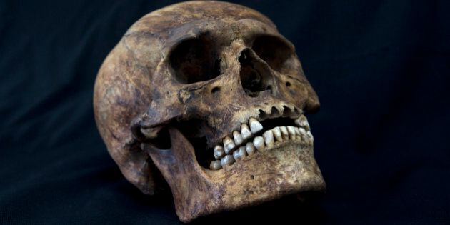 A skull from the recently discovered Xaloctan site is displayed at the National Institute of Anthropological...