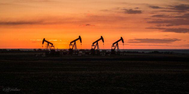 Pump jacks on the Albertan
