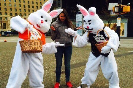 The Hunt for Easter Chocolate That's Free From Child