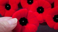 Why I Didn't Wear A Poppy This Remembrance