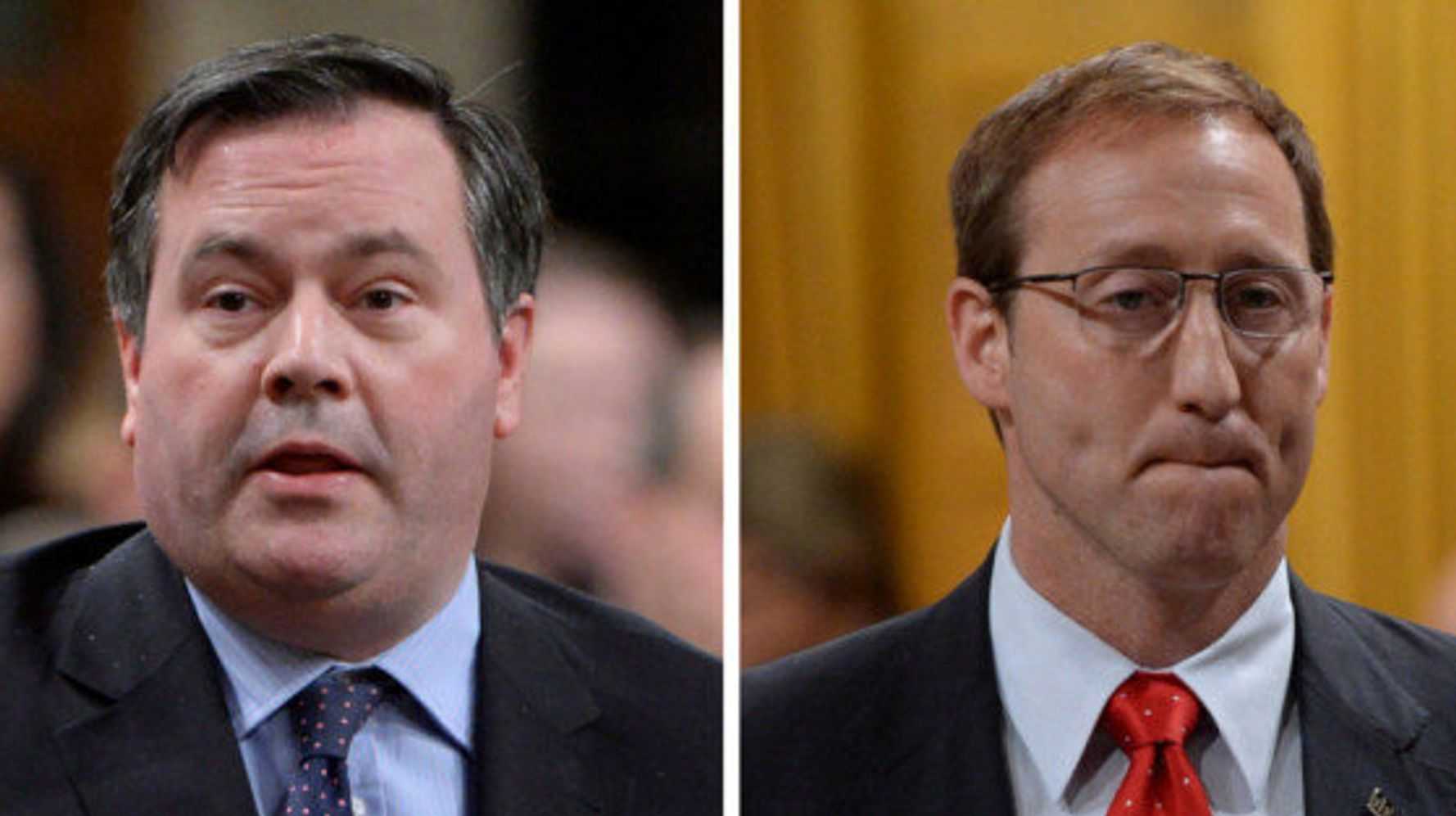 Peter MacKay wont endorse any Tory leadership candidate
