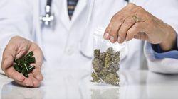 Medical Marijuana, Coming To A Family Doctor Near